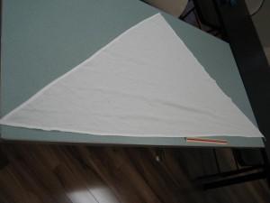 First Aid Essentials - Triangle Bandage
